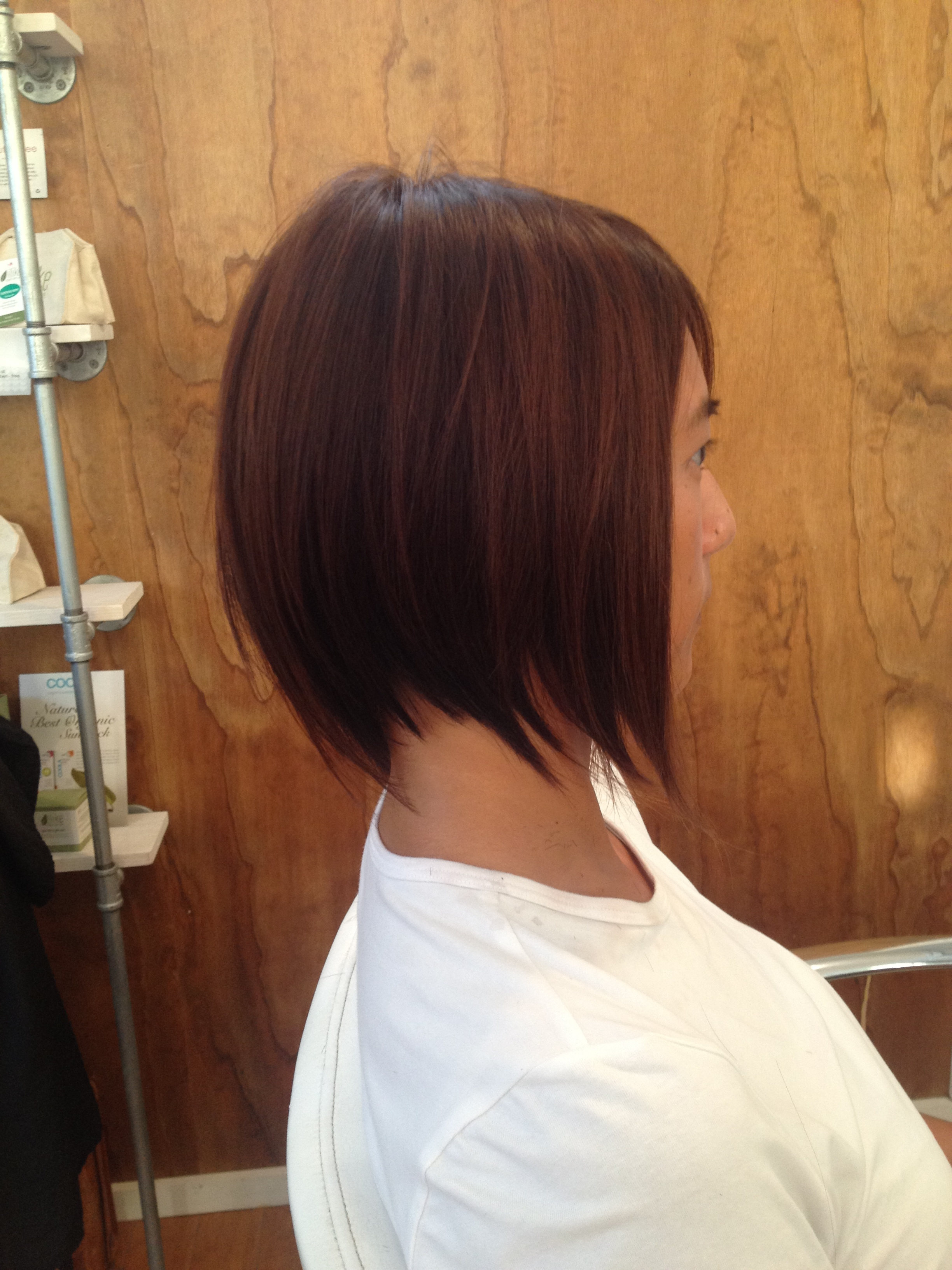 Andreamillerhair Andrea Miller San Diego Hairstylist Color